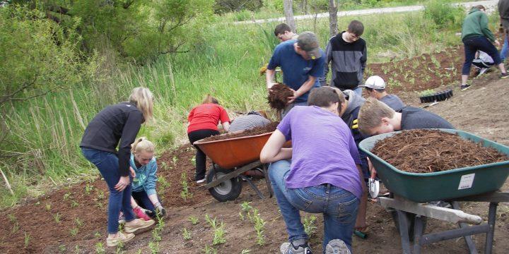Fremont Michigan Students planting a rain garden at Fremont High School