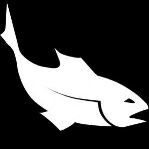 fish-300x300