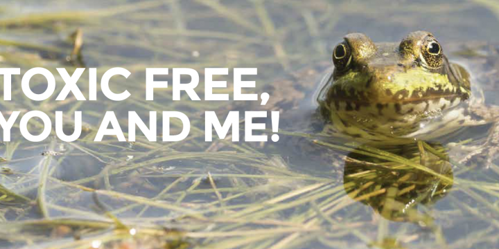 toxic free you and me - free michigan mercury collection program great lakes restoration