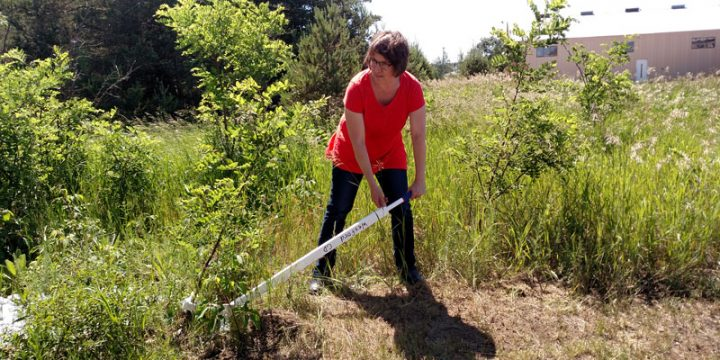 NCCISMA Program Coordinator, Vicki Sawicki, demonstrates using the Uprooter tool to remove small black locust trees