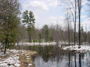 winter photos muskegon river 2016