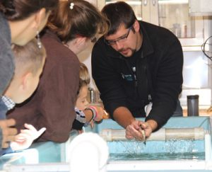corey jerome lake sturgeon rehabilitation