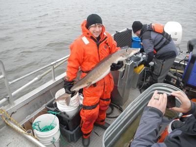 Lake Sturgeon rehabilitation in michigan