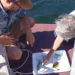There's Still Time to Enroll in the Exotic Aquatic Plant Watch!